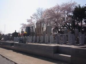 一霊様に一体の石仏墓が魅力の永代供養墓